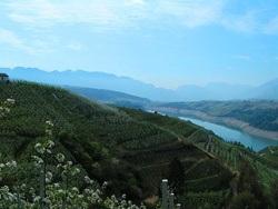 La tua vacanza rurale in trentino alto adige informazioni for Trento informazioni turistiche