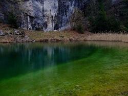 Vacanza nella natura del trentino alto adige visita ai for Trento informazioni turistiche